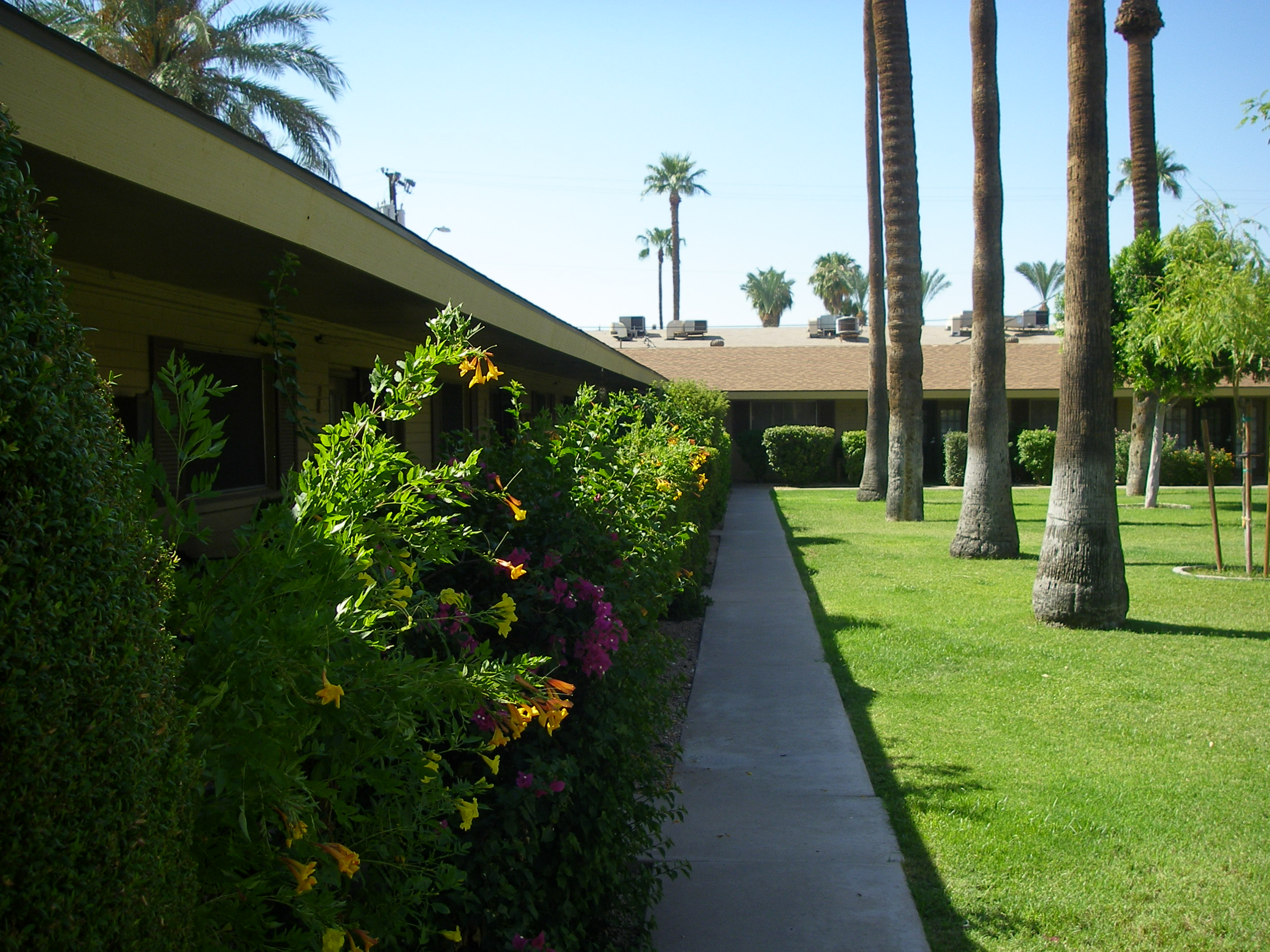 Sidewalk view of courtyard